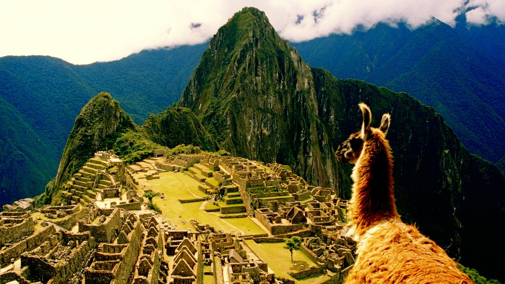 This llama's eye view of Machu Picchu. TravelGoals via @DailyMail