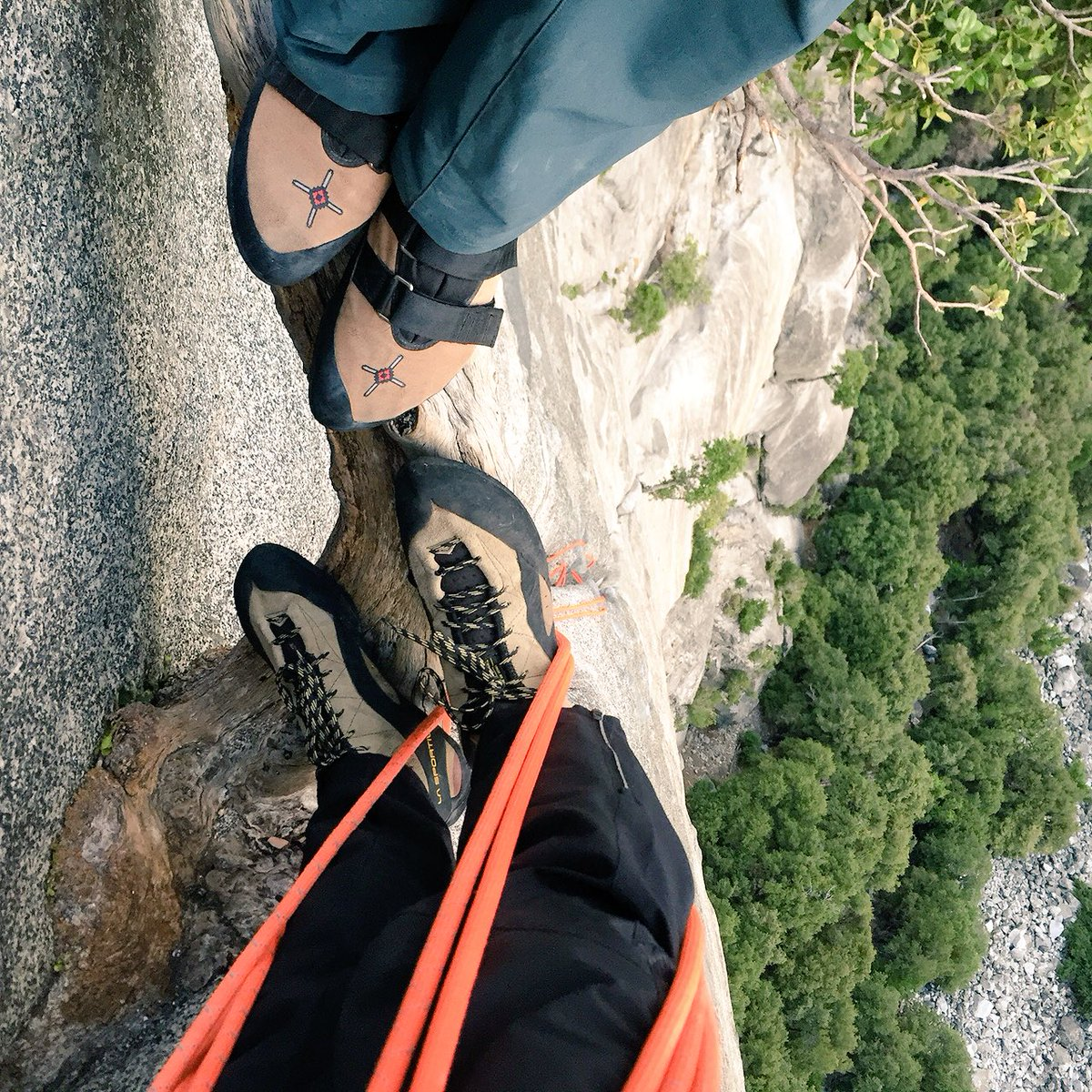 They should call this the tree of life. Climbing Serenity Crack in #yosemite with @kjorgeson https://t.co/G0er8Aq8UL