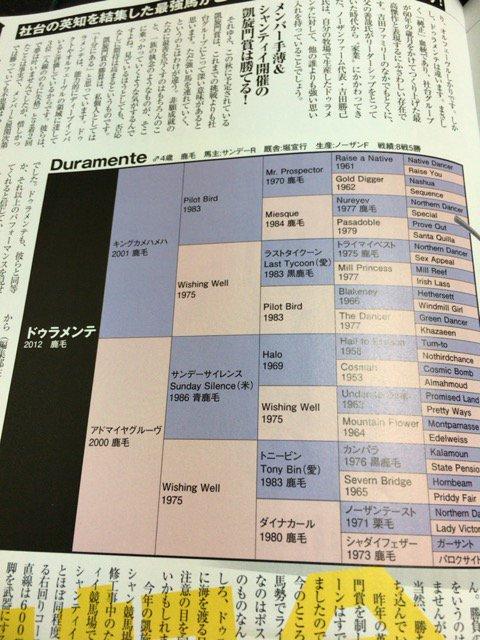 栗山さんのドゥラメンテの記事が読みたくて最強の法則7月号買ったのに血統表がこれとは。金返せレベル。 https://t.co/f94B5BMmbi