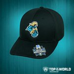 GO CHANTS!  RT for your chance to win this #CWS #CCU hat courtesy of @towcaps. Winner announced after the game. https://t.co/MVkthUDT0b