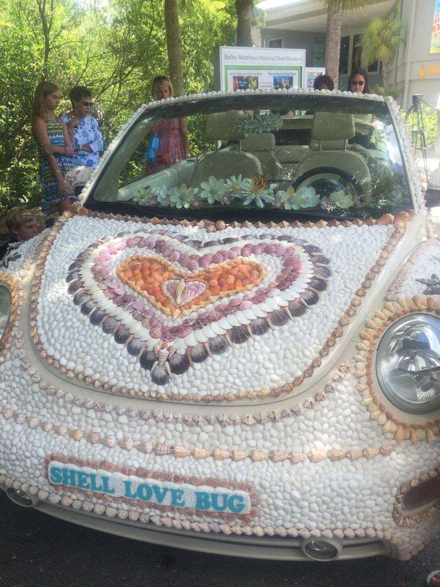 Check out the #ShellLoveBug in Sanibel on #NationalSeashellDay ! https://t.co/h0yOweROIu