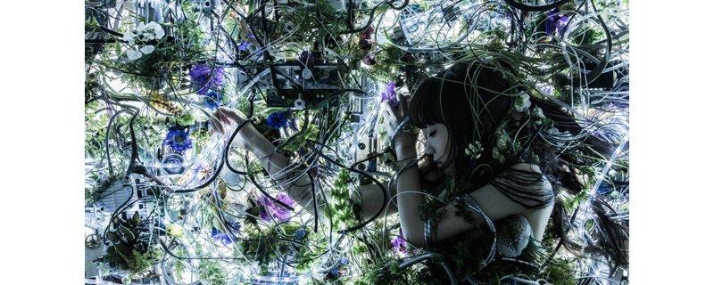 甲鉄城のカバネリEDテーマ『ninelie』も好評な歌姫Aimer9月からワンマンツアー開催!埼玉・広島・神戸・新潟・福