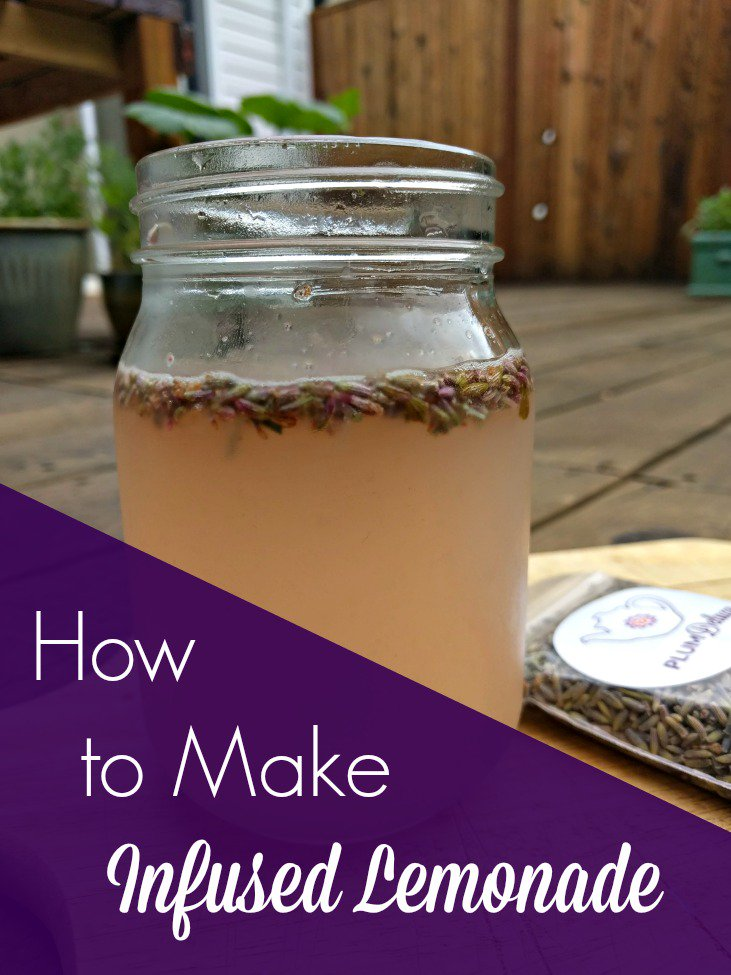 Learn how to make infused lemonade - lavender, strawberry, basil, and more! https://t.co/i4x6xQ2svI https://t.co/SJq2r5ZNiD