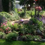'Serenity Oasis' tops this week's Garden Photo Contest