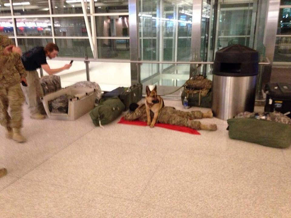 A military dog was spotted in the airport, protecting a soldier while he sleeps. Awesome loyalty. https://t.co/JfwMFk9pJ4
