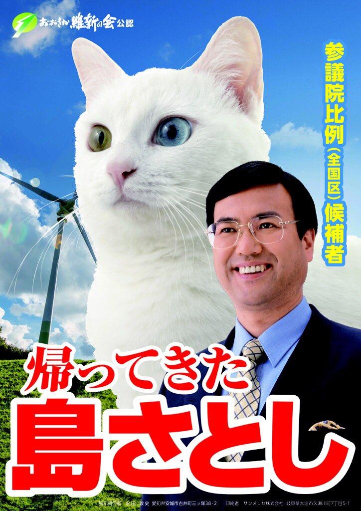 吾輩は白い猫である。名前は「島ニャン」と言う。吾輩が候補者と間違えられているニャン。候補者は「島さとし」。衆議院議員9年、ソフトバンク社長室長9年。応援してほしいニャン! https://t.co/p5cknVTqCd https://t.co/amyk4UQmoW