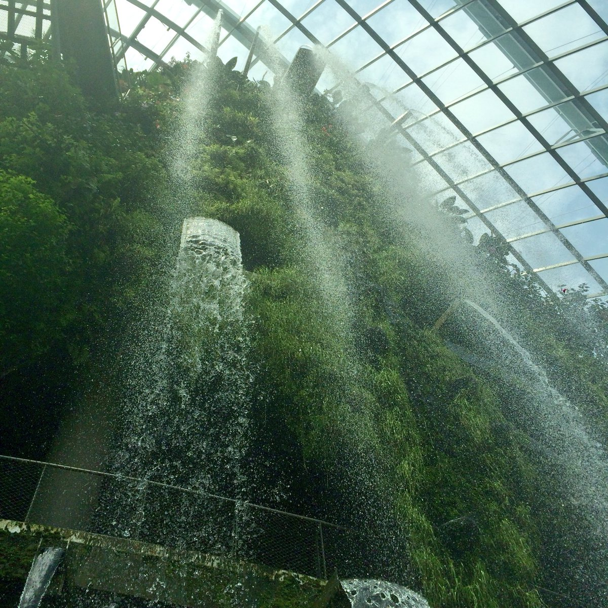 The cool, moist Cloud Forest at #Singapore's Gardens by the Bay features a waterfall and a columnless steel grid. https://t.co/YrQvuOw61F