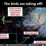 The birds of the region are up and active this morning (hungry?)! Check them out on this mornings radar image! https://t.co/uJZva39wvR