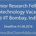 #Junior #Research #Fellow #Biotechnology #Vacancy @ IIT Bombay, #India https://t.co/dx3namzzB2 https://t.co/Xv1hjZcf87