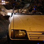 TEMPORAL: Arboles caídos y un auto destrozado por el fuerte temporal en Montevideo. https://t.co/Eg1D2zTeSh https://t.co/03VhI8j96d