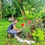 Matteo our #Italian #Wwofer working on the #garden at #MountBriscoeOrganicFarm  #Organic #wwoofireland #ireland https://t.co/mVV424WFwT
