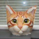 1000RT:【猫人間になれる】『リアル猫ヘッド』、オーダー販売を開始! https://t.co/V4E6EIlJdp 注文時に自分の好きな模様が注文できます。ただし短毛のみとなっているのでその点はご注意を。 https://t.co/mvmp3gxoLt