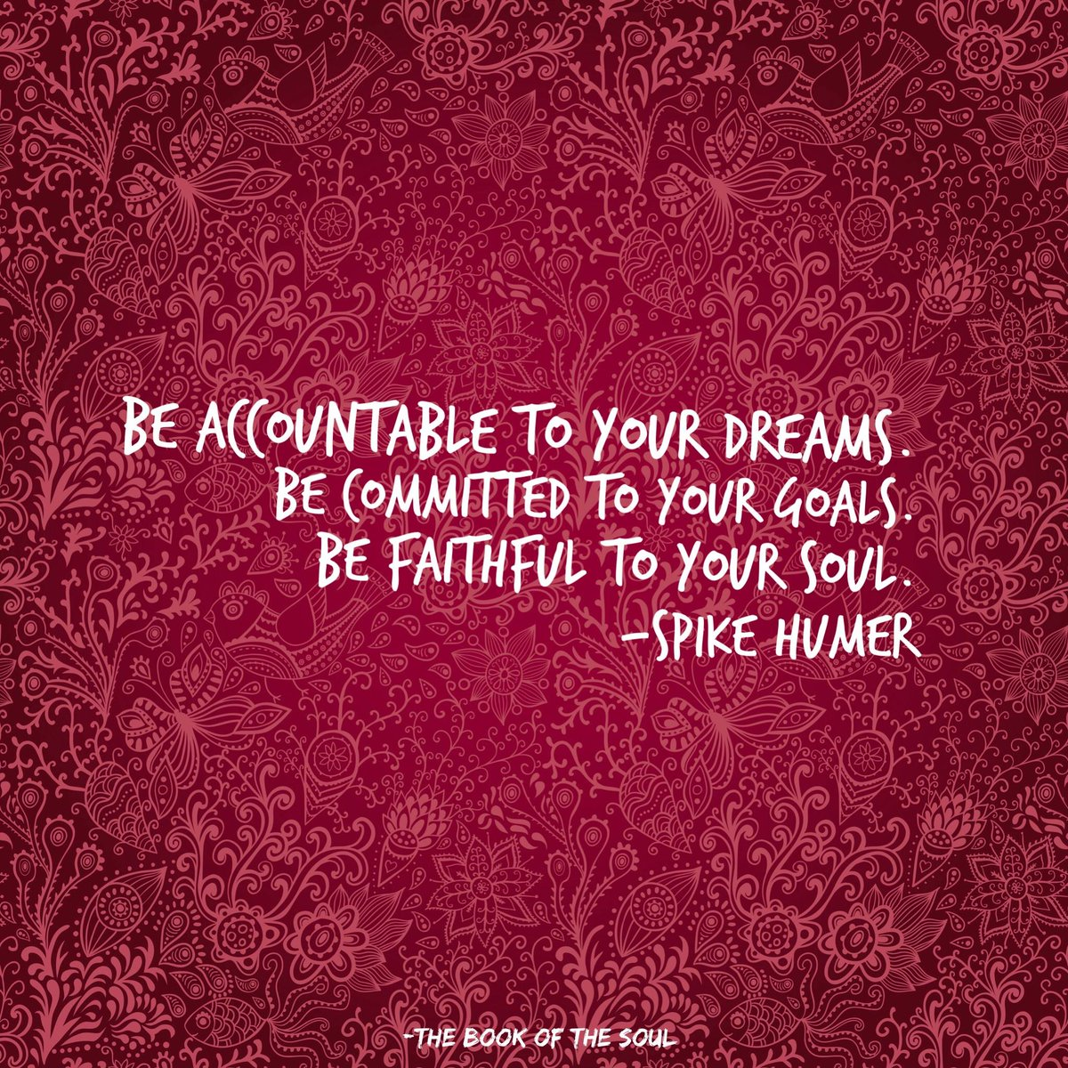"""""""Be accountable to your dreams. Be committed to your goals. Be faithful to your soul."""" Spike Humer https://t.co/9U2xhUV18z"""
