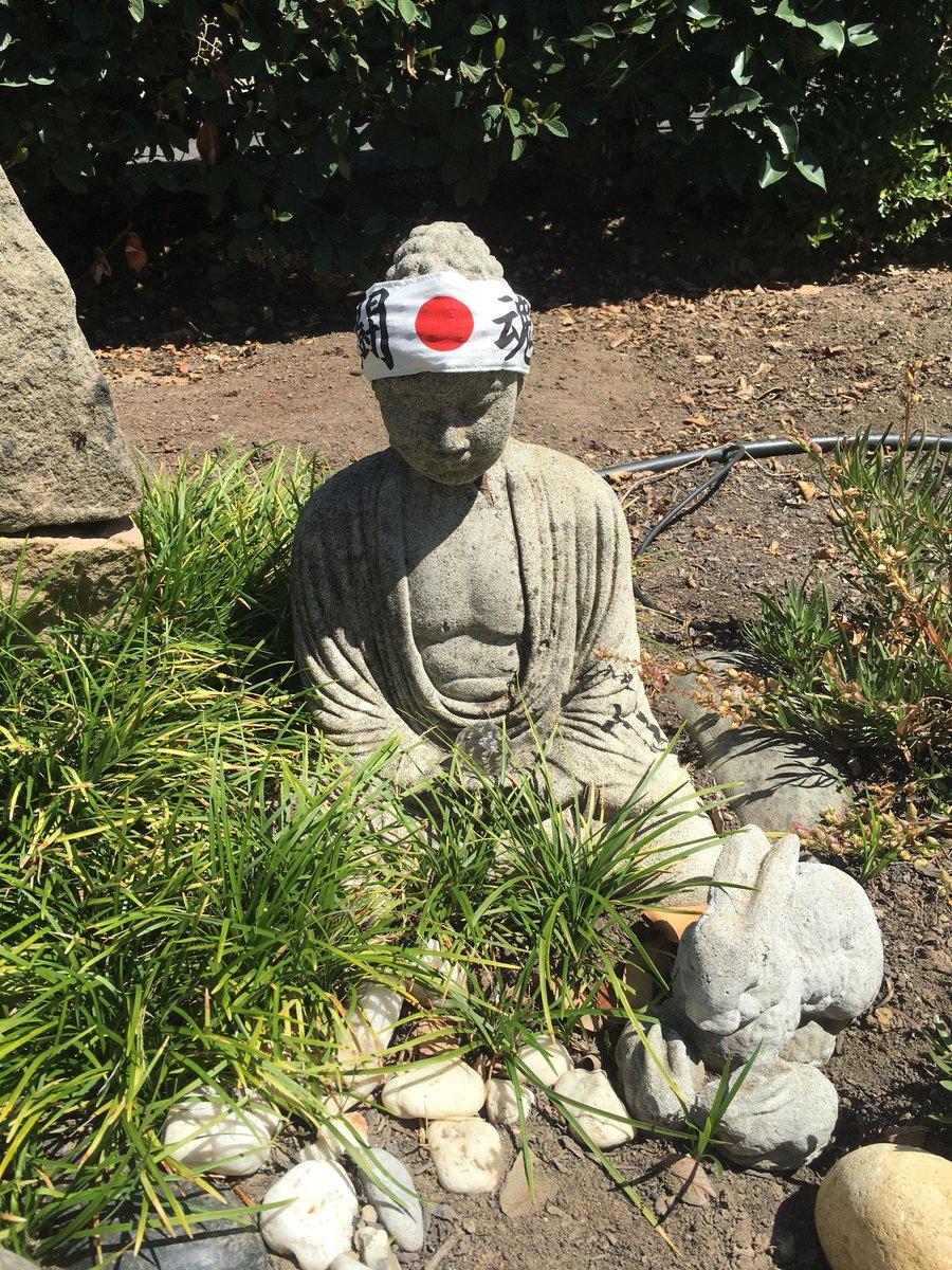 カリフォルニア州の閑静な住宅街に住む友人が、自宅の庭を案内してくれた。「日本庭園みたいな感じを出したかったんだよ」と言っているが、アイテムの組み合わせ方には一考の余地がありそうだ。 https://t.co/Tyl6klLWOE