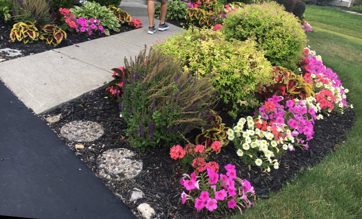 My dad has a pretty legit garden though! Amiright? https://t.co/d35DcU0soE