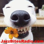 WE;RE ON NOW .@JazzBitesRadio .@steventeaster .@SammyStein111 .@ASISaveTheMusic #JAZZ #EDM #SMOOTHJAZZ #CUBA #LA https://t.co/f3c80Zfw7s