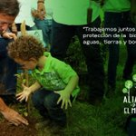 Gracias a los más de 15,000 voluntarios que hoy hicieron posible #ReforestaPanamá. https://t.co/n0iVv6MEaH
