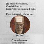 """#LibriDaMedaglia """"Porge la rosa più bella sognata."""" Ungaretti @CasaLettori https://t.co/xtIt4ijSYD"""