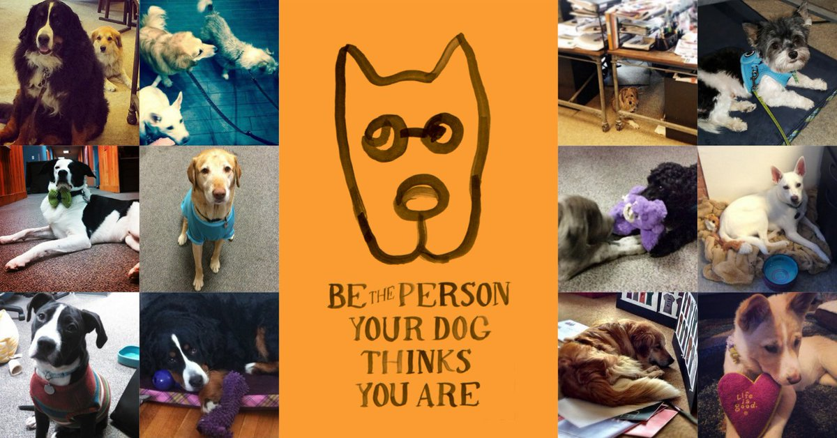 In honor of #NationalDogDay, is there a dog who makes life good for you?  https://t.co/QY3rdkTHOW https://t.co/4P0G2Y0usV