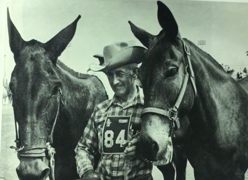 The 3,500-mile Great American Horse Race went across the U.S. – and was won by a mule: https://t.co/nck1AKbH98 https://t.co/lMfsRjKXrt