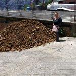 Traslado de material granular para beneficiado de la GMVV a comunidad en El Mirador mcpio San Cristóbal https://t.co/x9p4pblqkq