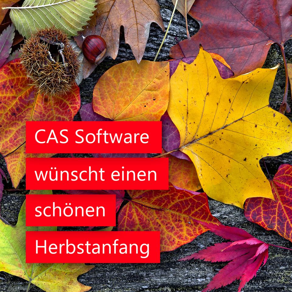cassoftware