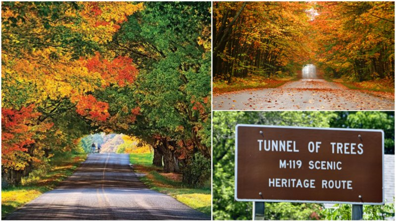 This scenic drive through a tree tunnel is the ULTIMATE fall color drive https://t.co/Y16EwcRVVx @PureMichigan https://t.co/8FxvNcwQGs