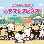 TVアニメ「タマ&フレンズ ~うちのタマ知りませんか?~」の放送局・キャスト・主題歌・スタッフの情報が公開になりました。