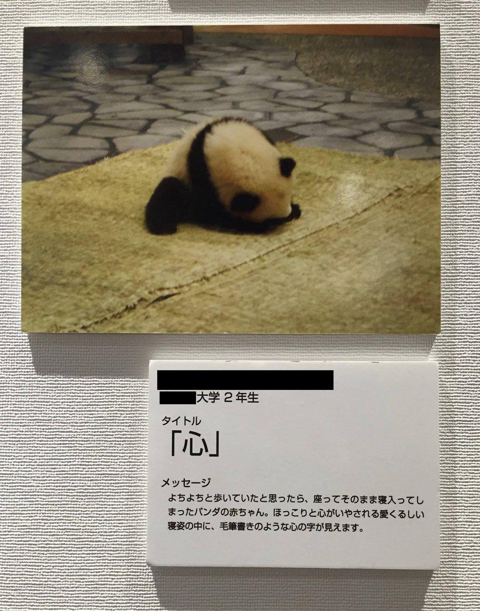 漢字ミュージアムにあった「町の中の漢字」。うまいなあ。特に、第二画が跳ねているのが見事。 https://t.co/iU2GQrqD9l
