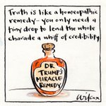 The miracle of truth. My @smh toon. https://t.co/fQhfszu4m0