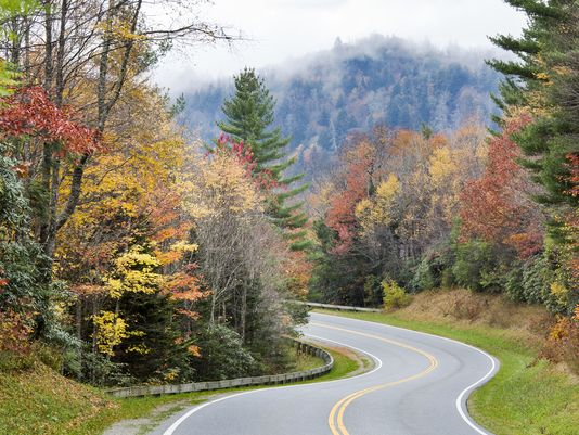 Catch best fall leaf viewing spots in the Smokies. https://t.co/v5RFquAgn8 #avlnews https://t.co/xM2bJhGInE