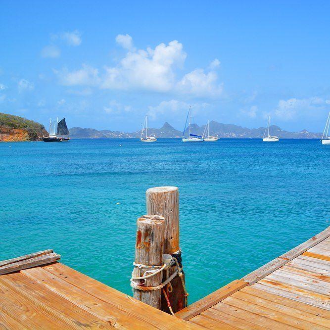 Meet the blue of the Grenadines. #caribbean #stvincentandthegrenadines #travelblogger #tra… https://t.co/JmdZJcJIxE https://t.co/JgqK07eyyU
