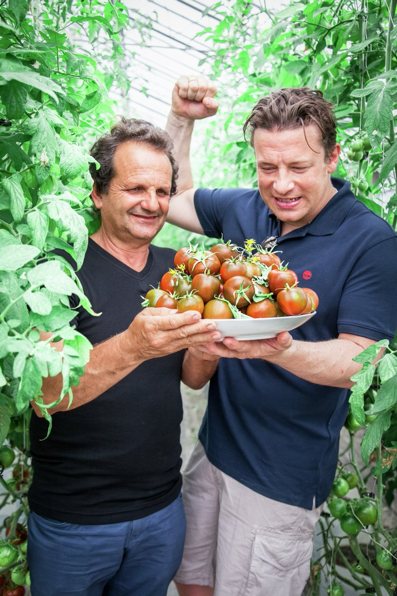The Don of tomatoes guys! What a loverly fella. Just look at those tomatoes, delicioso!!!! xxJ https://t.co/r8r52oPcGI