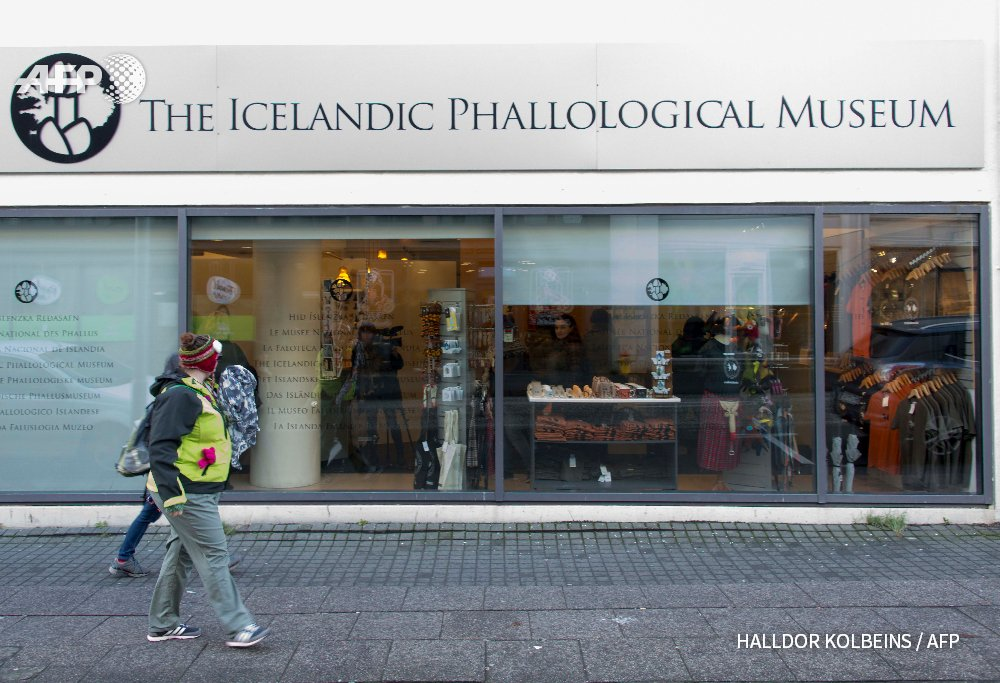 Iceland breaks taboo with world's largest penis museum