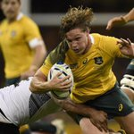 RUGBY: Wallabies ready to play in Japan in 2017