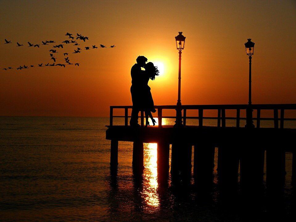 وتبدأ حكايتنا كعشاق بلقاءٍ وهمساتٍ وكثيرٍ  من الأشواق وحبٍ تجاوز حدود السماء منكِ أستمدُ كلماتي وحروفي هدوئي وسكينتي شكي ويقيني فأتوهُ بين ملامحكِ وحزني ياقدري الجميل ياأنت فتملأ قلبي رياحُ الشوق وأحْـتـَرقُ بلهفة ٍتغمرني كم أهوى المساء  برفقتكِ https://t.co/wRGVloTMzZ