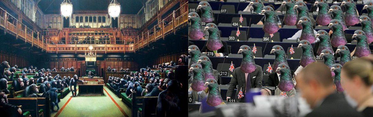 test Twitter Media - The Brexit extension risks making this Parliament a real pigeon house, a dovecote. With British MEPs flying in & out & others on the substitute benches. Banksy already depicted Westminster as a house of monkeys. He could paint this blue hemicycle in Strasbourg filled with pigeons https://t.co/YckqCq2wy4