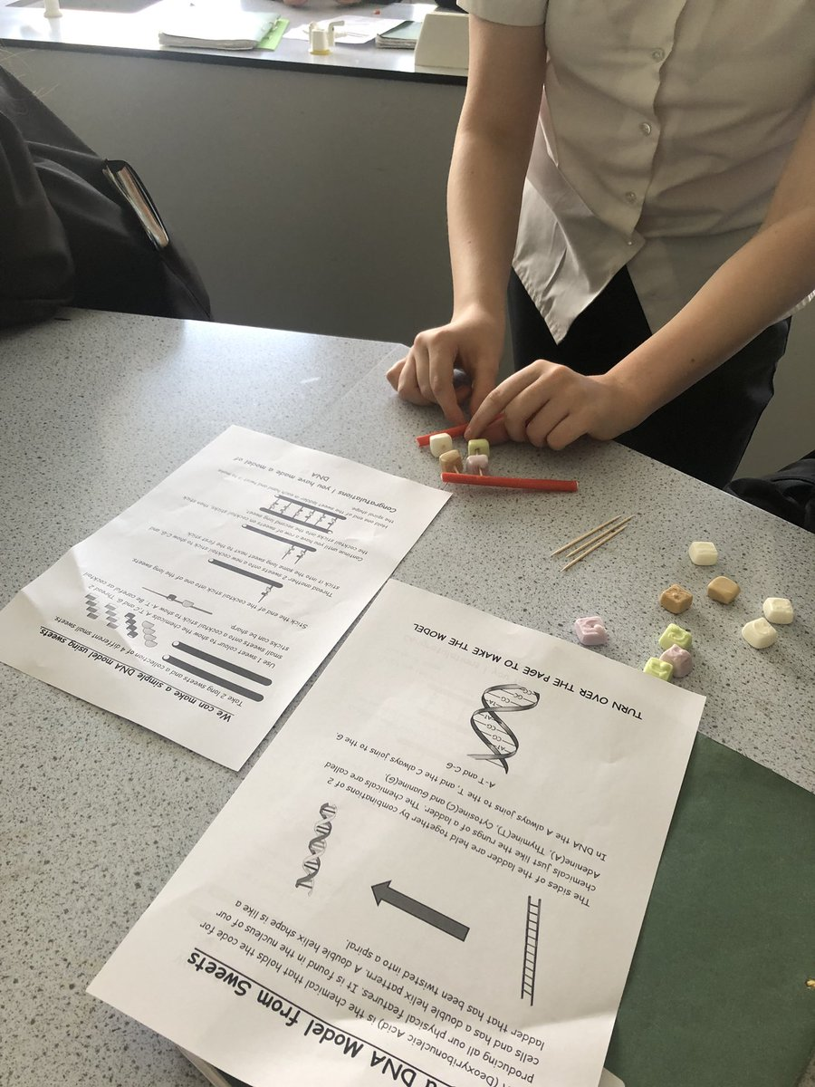 test Twitter Media - Year 10 scientists have been learning about genetics and made models of DNA using sweets today! 👨‍🔬🧬👩‍🔬🍬 https://t.co/h9hrncJALm