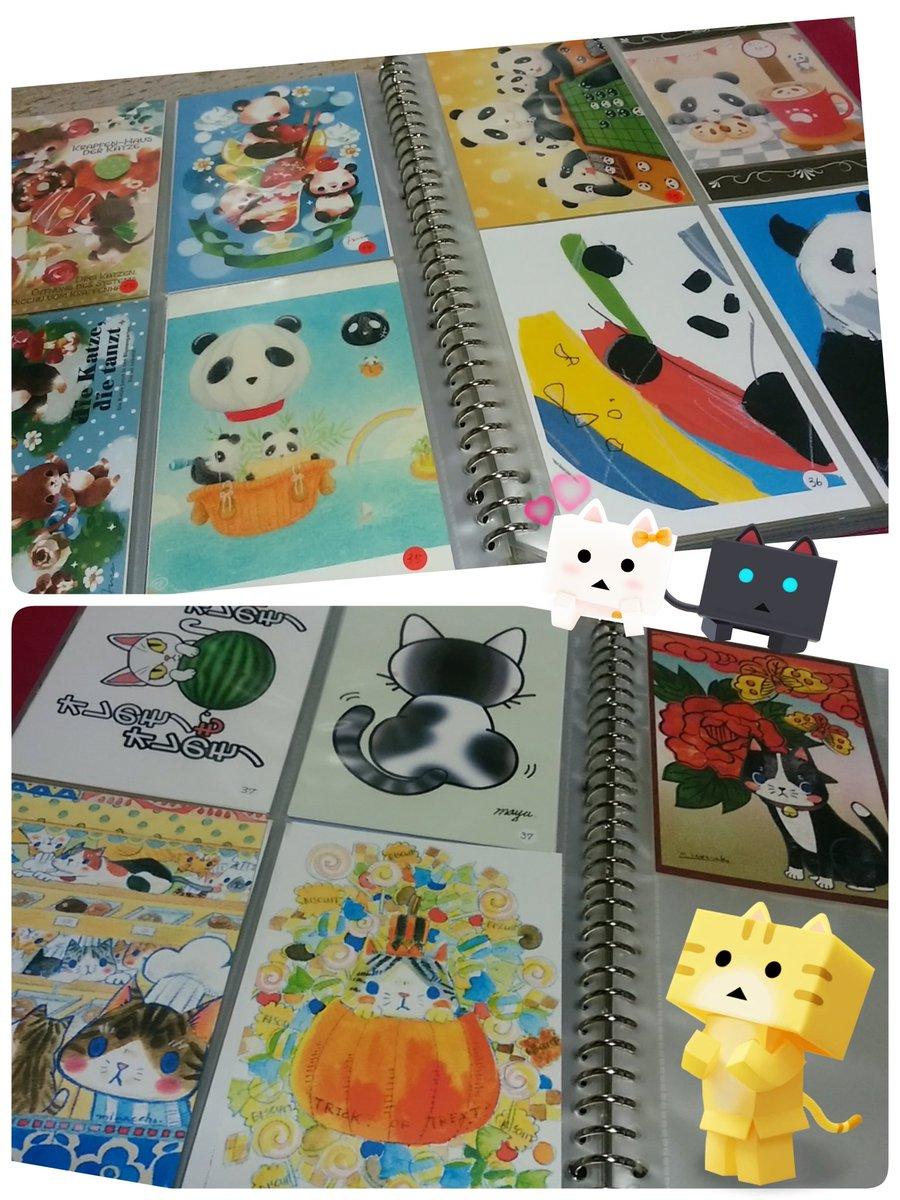 にゃんぼー「パンダと猫の雑貨展」でラブリー❤なハガキ購入🎵くぼもとさん()とかわさきさん( ) が特にお気に入り❤ #パ