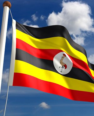 Rights groups urge Uganda to back probe into deadly clashes