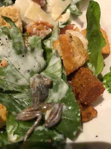 Woman finds frog in salad at BJ's restaurant in West Covina
