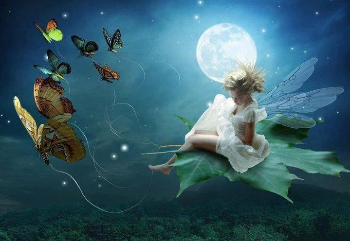 test Twitter Media - A magical ride through the night sky! While Santa has reindeer, fairies have butterflies! #fantasy #magical #EllenRothAuthor https://t.co/xPhj8u8aw0