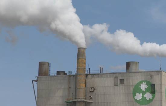 N.B. Conservation Council wants Climate Change Plan legislated sooner than later