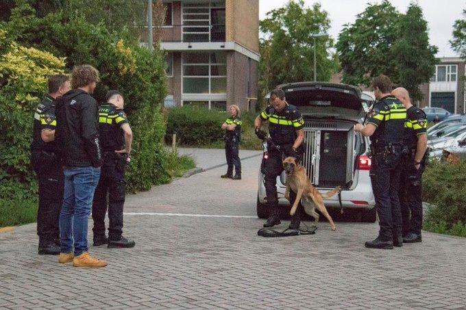 Schiedam; Man aangehouden na politieachtervolging op A20 https://t.co/lff8gh9Ipp https://t.co/pTwqhgVeIh