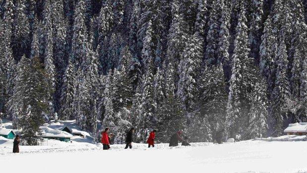 Cable car crashes in Kashmir tourist resort, killing seven