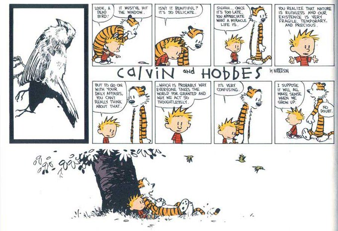 Happy Birthday Bill Watterson. A lovely Sunday strip.