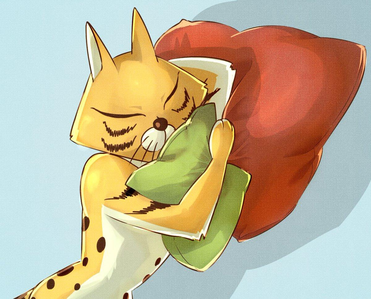 ぼのぼの:お昼寝スナドリネコさん(アップ)〇クッションがそれらしくかけた寝顔が可愛く描けた線画丁寧に描けた●皺が単調エア