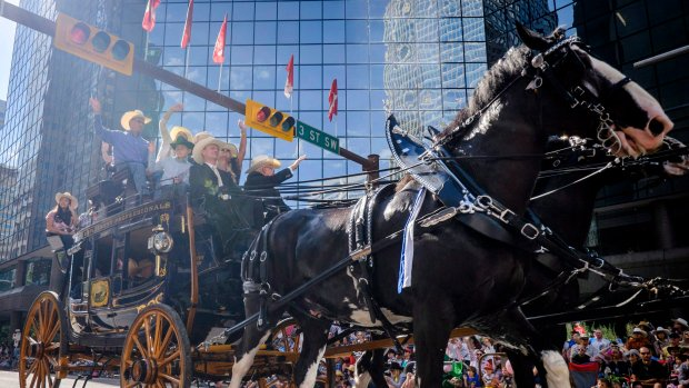 Heat warning in effect for Calgary Stampede visitors: Environment Canada