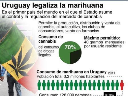 Uruguay se convierte en el primer país en vender marihuana estatal - Diario Co Latino