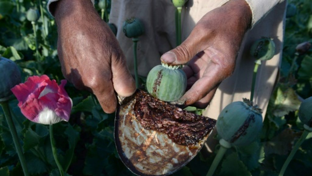 From poppy to heroin: Taliban move into Afghan drug production